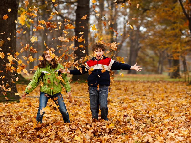 Çalışma Belleğini Geliştirmek İçin Mükemmel Bir Yol: Ağaca Tırmanmak!